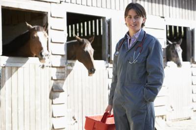 NaturaPÔLE ouvre une nouvelle formation : Technicien dentaire équin