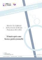 Devenir et insertion des diplômés de licence professionnelle. Promotion 2015-2016 enquêtée en décembre 2017