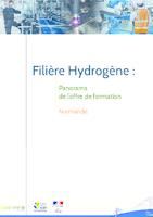 Filière hydrogène : panorama de l'offre de formation (42 p.)
