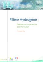 Filière hydrogène : besoins en compétences et en formation (78 p.)